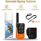 Focuspet Hunde Spray Erziehungshalsband, Anti Bell Halsband mit Fernbedienung für 200m Reichweite, 4 Modi von Ton und Zitronella Spray