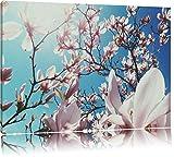 Dark Zarte Rosa Magnolie BlütenFormat: 120x80auf Leinwand, XXL riesige Bilder fertig gerahmt mit Keilrahmen, Kunstdruck auf Wandbild mit Rahmen, günstiger als Gemälde oder Ölbild, kein Poster oder Plakat