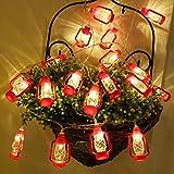 Best DECO FAIRY® En Natures - PINCHU LED Fairy String Lights Batterie Noël Décoration Review