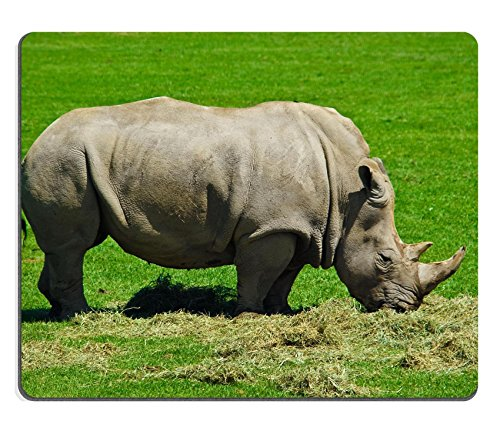 msd-natural-rubber-gaming-mousepad-image-id-3583357-big-hungry-rhinoceros-eating-lots-of-grass