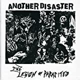 Another Disaster [Import anglais]