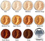 Intelligent Cosmetics® mineral make up foundation, setting veil, concealer, natural mineral ingredients SELECT YOUR COLOUR (1x Empty Sifter Jar)