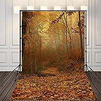 (SP)NIVIUS PHOTO 150x220cm Pictorial cloth(de vinilo delgada)Bosque del otoño de fondo la fotografía vinilo delgada tela impreso fondo para estudios, Newborn foto telón de fondo envío gratis D-2797