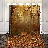 (SP)NIVIUS PHOTO 150x220cm Pictorial cloth(de vinilo delgada)Bosque del otoño de fondo la...
