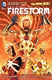The Fury of Firestorm: The Nuclear Men Vol. 1: God Particle (The New 52)