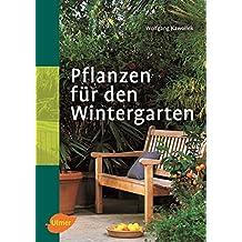 Suchergebnis Auf Amazon De Fur Wintergarten Pflanzen