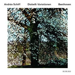 Beethoven: 33 Piano Variations In C, Op.120 On A Waltz By Anton Diabelli - Thema. Vivace (Bechstein Piano)