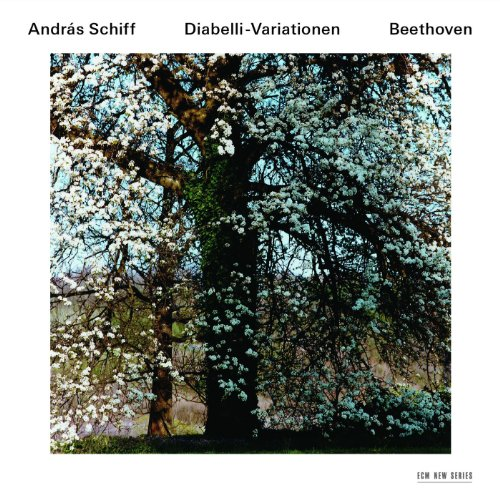 Beethoven: 33 Piano Variations In C, Op.120 On A Waltz By Anton Diabelli - Variation 11 (Allegretto) (Franz Brodmann Fortepiano)