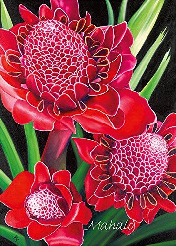 Pacifica Island Art Set von 12Hawaiian Grußkarten-Taschenlampe Ginger von Anna KEAY-Vielen Dank-Glitzer Karte -