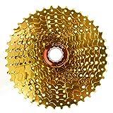 Nicololfle MTB Mountainbike 8 Geschwindigkeit 11-42T Kassette Freilauf Blcak Silber Stahl Fahrrad Schwungrad Kettenrad für MTB Mountainbike