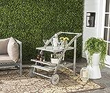 Safavieh Esstisch und Stühle, 5-Teiliges Set für den Garten, Holz, aschgrau, 64 x 87 x 87.12 cm