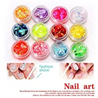 IGEMY 12 Colors Crushed Shell Chips Powder For UV Acrylic System 3D Nail Art (Multicolor)