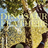 Songtexte von Dinosaur Feathers - Whistle Tips