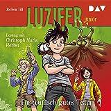 Ein teuflisch gutes Team: Luzifer junior 2