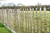 STILTREU Staketenzäune Staketenzaun Kastanie Höhen 50 cm - 200 cm, 5 Meter Rolle, 3 versch. Lattenabstände (Länge x Höhe: 500 x 122 cm, Lattenabstand: 4-6 cm)