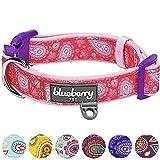 Blueberry Pet 2,5cm L Paisley-Druck Inspiriertes Ultimatives Pinke Neopren-Gepolsterte Hundehalsband, Mittelgroβe Halsbӓnder für Hunde