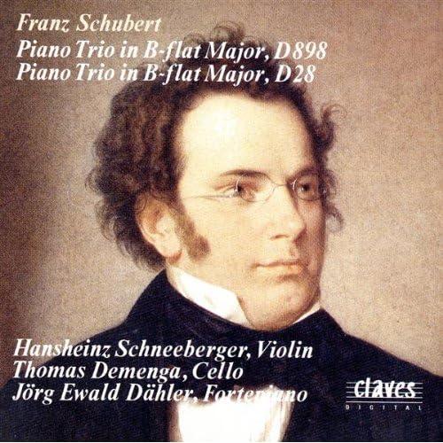 Piano Trio In B-Flat Major, Op.99, D 898: Andante un poco mosso