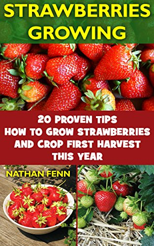 strawberries-growing-20-proven-tips-how-to-grow-strawberries-and-crop-first-harvest-this-year-garden