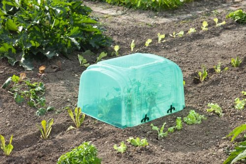 Intermas - Lot de 1 tunnel de croissance rigide NURSY TUNNEL - 59 x 49 x 32 cm -