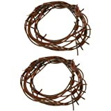 Leather fake barbed wire Copper//Rust Coloured