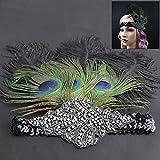 Federstirnband Feder Haarband Gatsby Damen Kopfband Kopfschmuck Kostüm Schwarz