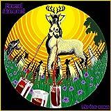 The Deer Woman by Funeral Marmoori