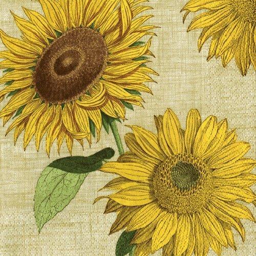 Mittag- oder Luncheon Papier Servietten Hochzeiten, Partys, Geburtstage Partys Sonnenblumen, Papier, gelb, 40 Stück