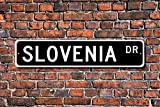 CELYCASY - Cartel de Metal con Texto en inglés Eslovenia Regalo esloveno Recuerdo de Eslovenia Nativa de Vacaciones Momento, Calle