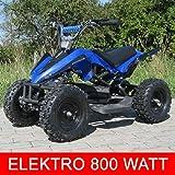 Mini Elektro Kinder Racer 800 Watt ATV Pocket Quad Kinderquad