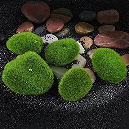 5 Piedras de Musgo artificial de espuma de grama planta de maceta para decoración de jardín, Micro Terrario o paisaje, Ornamento Miniatura Decoración de casa de muñecas