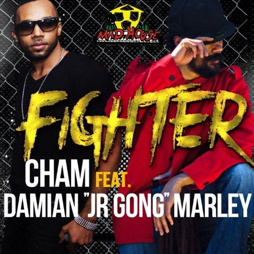 """Fighter (feat. Damian """"Junior ..."""