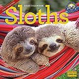 The Original Sloths 2018 Calendar