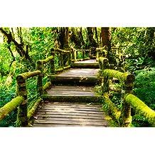 Fototapete urwald  Suchergebnis auf Amazon.de für: Tapeten - Fototapeten - Urwald