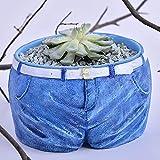 YHUJH-Home Nuovi vasi di Fiori carnosi a Forma di Jeans Creazioni Creative in Resina Mini Ornamenti in Vaso