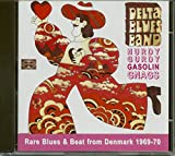 Delta Blues Band Plus+7