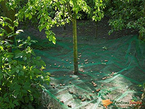Filet de ramassage fruit et feuilles mortes en polyéthylène 35gr/m² 4,3x4,3m