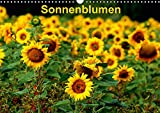 Sonnenblumen (Wandkalender 2019 DIN A3 quer): Sonnenblumen in verschiedenen Farben und Formen, wie gewachsen im Feld (Monatskalender, 14 Seiten ) (CALVENDO Natur)