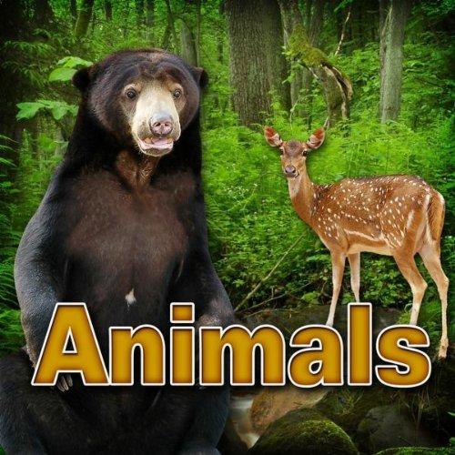 Prairie Dog - Black Tailed Prairie Dog Barking - Black-tailed Prairie Dog