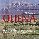 Sardegna Oliena: In Ammentu De Toni Mereu
