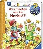 Was machen wir im Herbst? (Wieso? Weshalb? Warum? junior, Band 61) - Andrea Erne