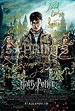 Harry Potter Filmposter, 1 Stück