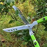 Mkulxina Cisailles de Jardin, sécateurs d'arbres, sécateur, Extension étirement cisailles pour verger Jardin (Color : Photo Color)