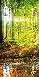 Artland Qualitätsmöbel I Garderobe mit Motiv Holz Bedruckt und Metall Haken Landschaften Wald Fotografie Braun F1YL Wald mit Bach