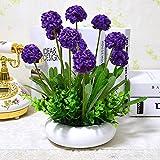 XHOPOS HOME Flores artificiales plantar plantas en macetas lavanda Violeta bolas decorativas flores falsos para la Casa y Jardín decoración del partido