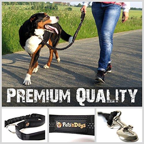 Sportliche HUNDE-LEINE mit elastischer Ruckdämpfung & soften Neopren Handschlaufen | Premium-Qualität | 2-stufig einstellbar | Sicherheits-Reflektoren | 2 Gratis Booklets | Pets'nDogs - 4