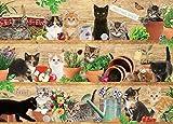 Mischievous Moggies - Verschmitzte Katzen - Puzzle 1000 Teile
