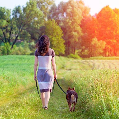 2m Hundeleine für grosse Hunde – Reflektierende Nylon Führleine - 2