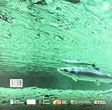 Image de Atlas de los Ríos salmoneros de la peninsula iberica