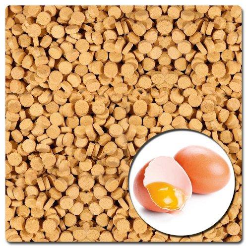 AQUALITY Ei-Energie Futtertabletten 1.000 g (PREMIUM Fischfutter-Tabletten für Aquarium-Fische - Enthält hochwertiges Eiweiß und Eigelb - Wichtig für den Energiehaushalt der Fische)