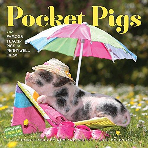 Pocket Pigs 2016 Calendar: The Famous Teacup Pigs of Pennywell Farm PDF Books